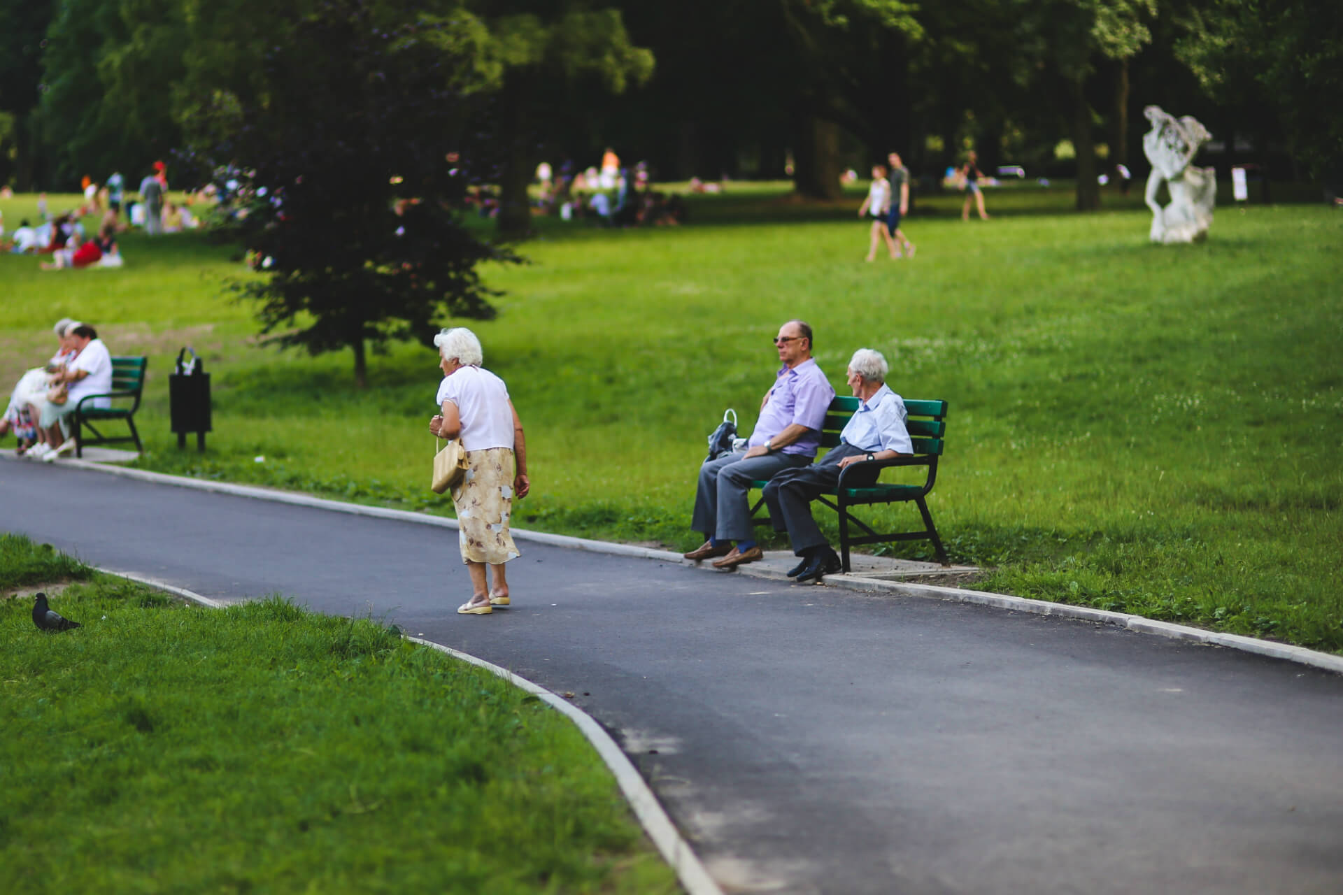 U.S Tax Guide for Retirees